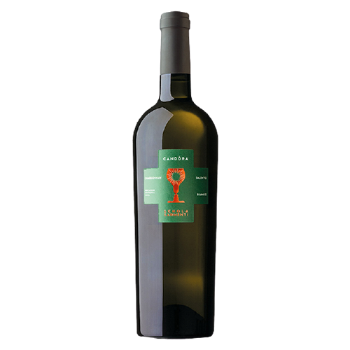 Rượu vang ý Candora Schola sarmenti