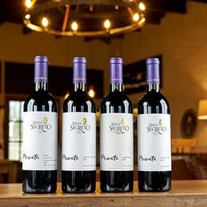 Rượu vang Chile Valle Secreto Private