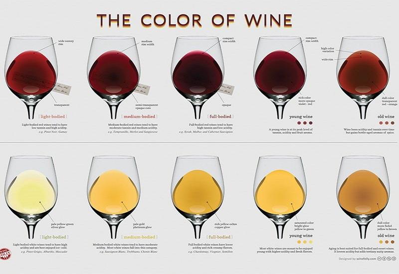 Các tông màu đỏ của rượu vang