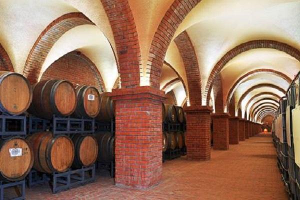 Rượu vang càng để lâu càng ngon đúng không?