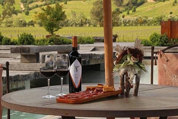 Rượu vang Chile Montes Alpha M