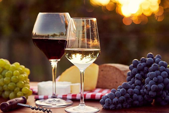 Rượu vang trắng | Quy trình sản xuất rượu vang trắng 1