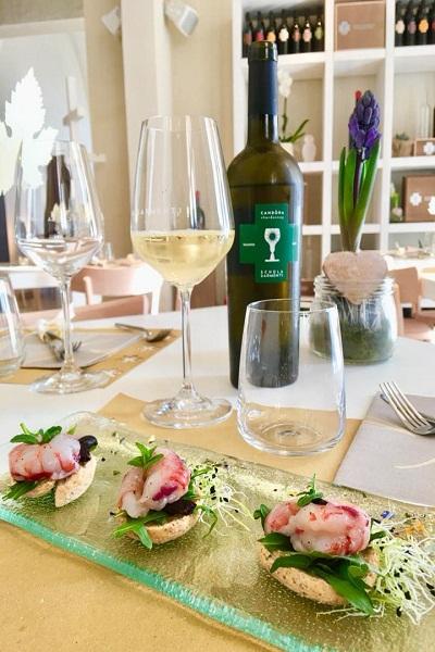 Rượu vang Ý chén thánh trắng Candora