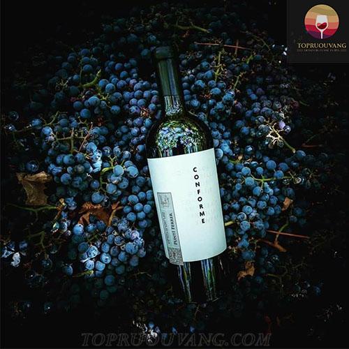 Rượu vang Punti Ferrer Conforme