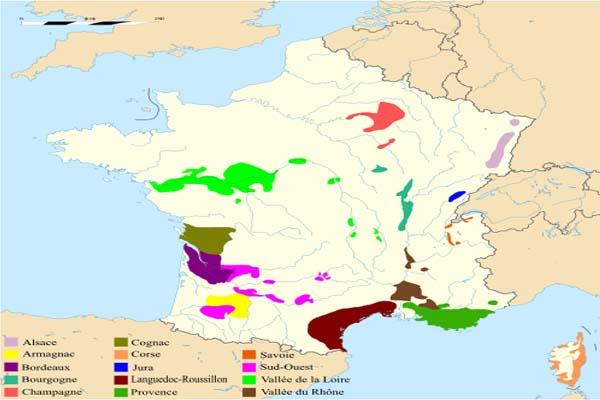 Các vùng trồng nho và làm rượu vang Pháp
