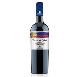 Rượu vang Terre di Sole Rosso Negroamaro