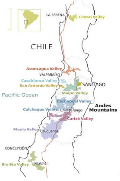 Lịch sử làm vang Chile cơ bản