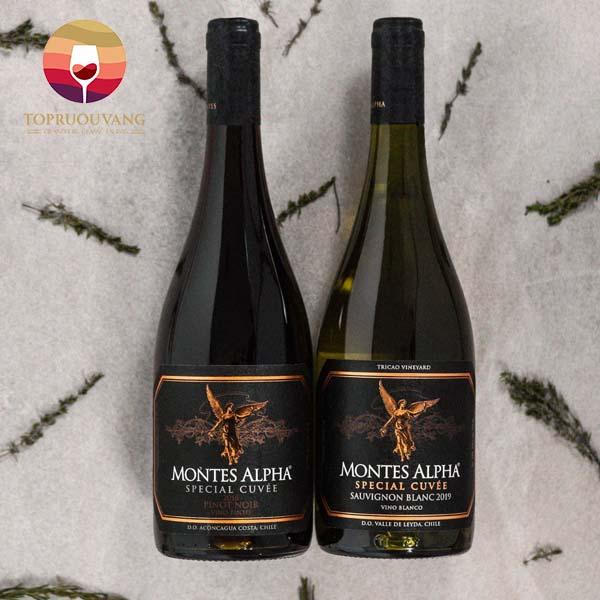 Vang-Montes-Alpha-Special-Cuvee-Sauvignon-Blanc-2