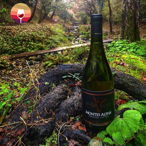 ruou-Vang-Montes-Alpha-Special-Cuvee-Chardonnay-2